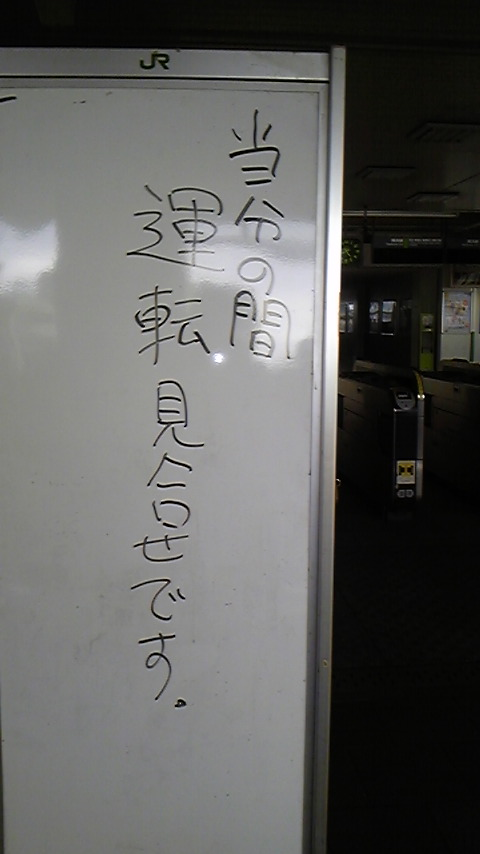 帰れにゃい(:_;)